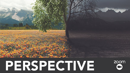Perspective - Member Session - 2020 - August