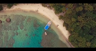 Turtle Reef Cruises Video