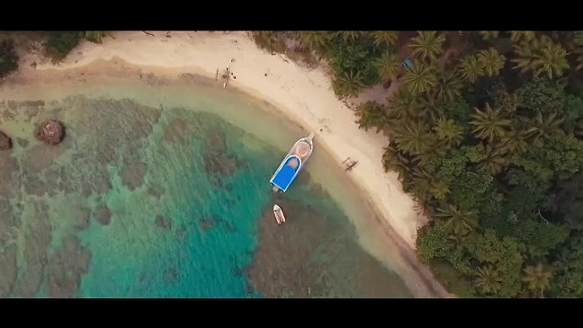 Turtle Reef Cruises Video