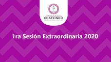 Primera sesión extraordinaria 2020