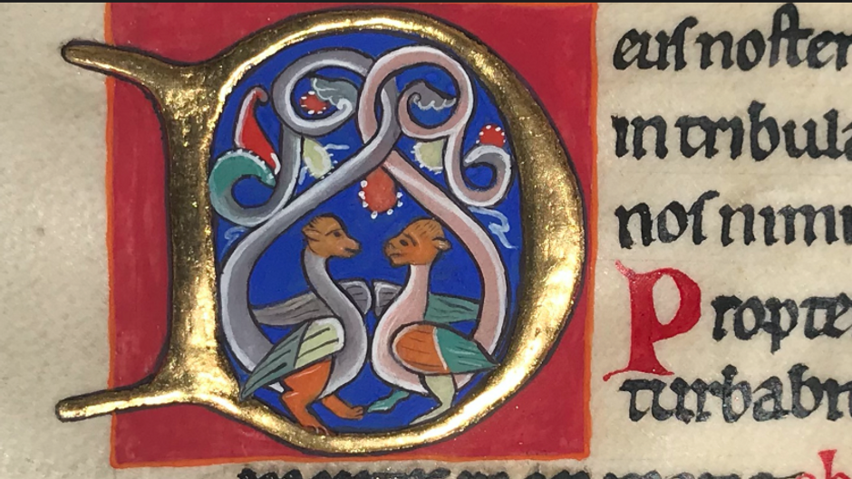 Writing and illuminating on parchment