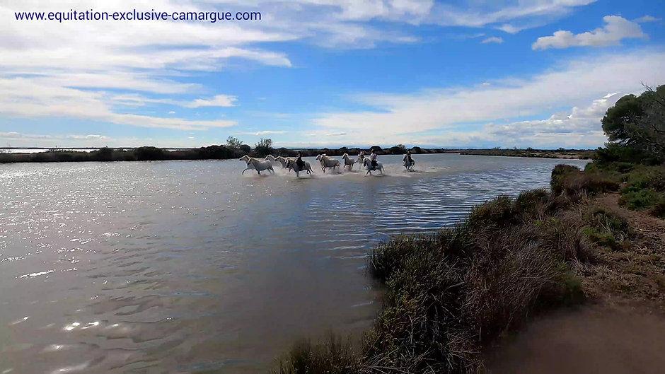Equitation Exclusive Camargue