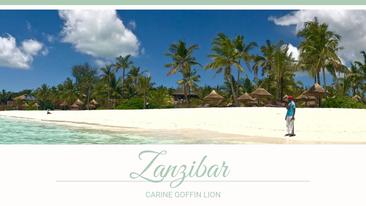 Extrait guide Zanzibar pdf
