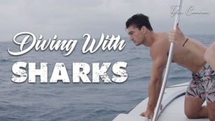 FREE DIVING WITH SHARKS | Tyler Cameron