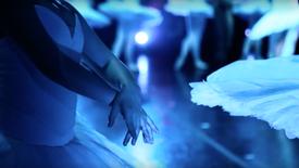 Louisville Ballet - Swan Lake Reimagined