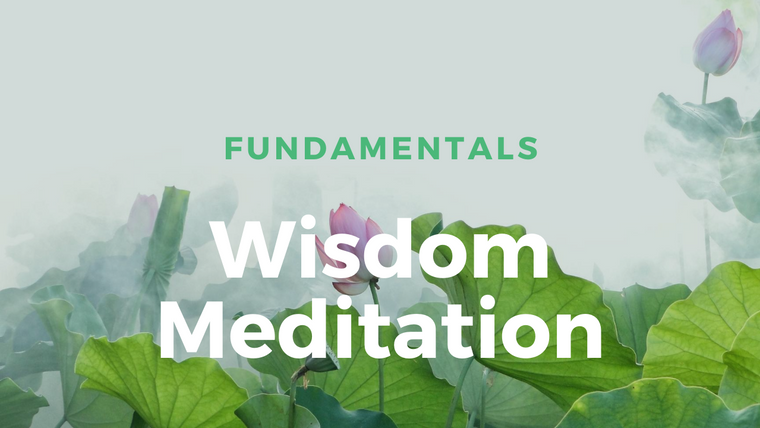Fundamentals of Wisdom Meditation
