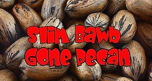 Slim Bawb Gone Pecan