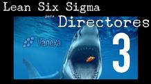 3. ¿Quiénes usan LSS? | Lean Six Sigma para Directores