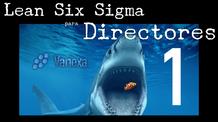 1. Brechas Empresariales | Lean Six Sigma para Directores