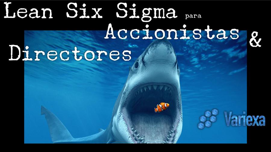 Lean Six Sigma para Accionistas, CEO & Directores (Extracto de Conferencia Virtual)