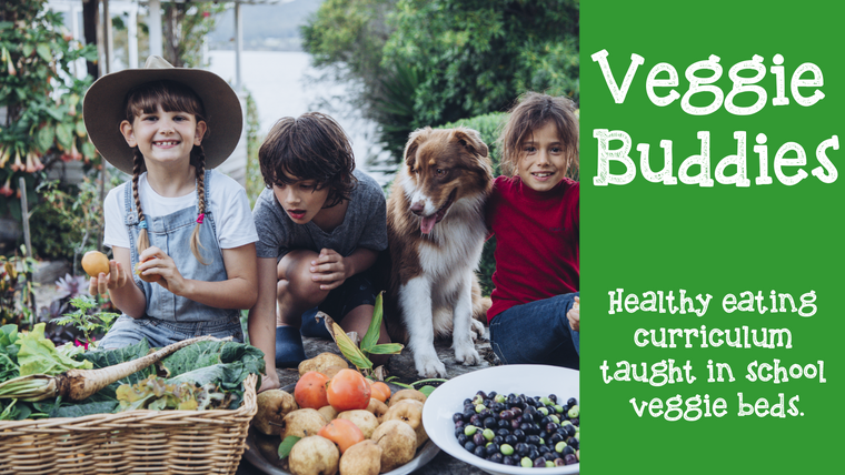 Veggie Buddies 10 week veggie gardening and healthy eating curriculum.