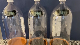 Lesson 3 T2 Unheated Bottle