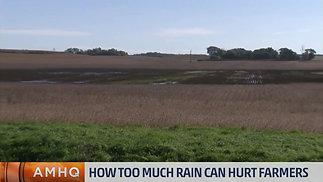 Lesson 12 Too much rain can hurt farmers