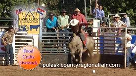 Pulaski Co Fair June 2019