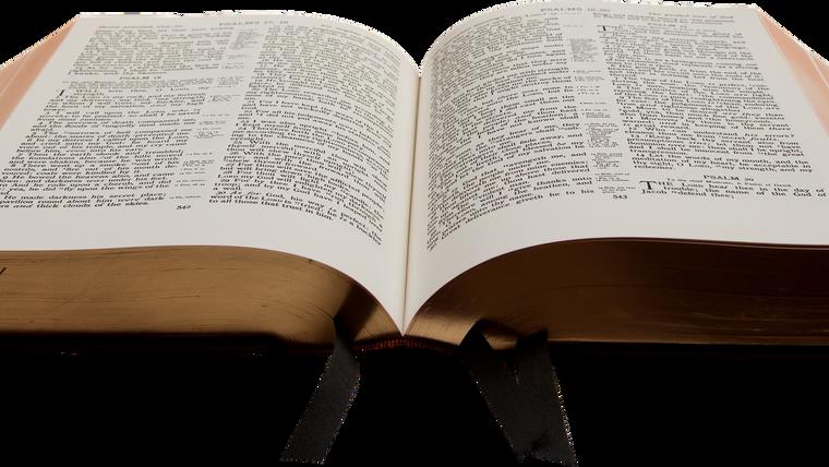 Fr. Lee Bible Presentations