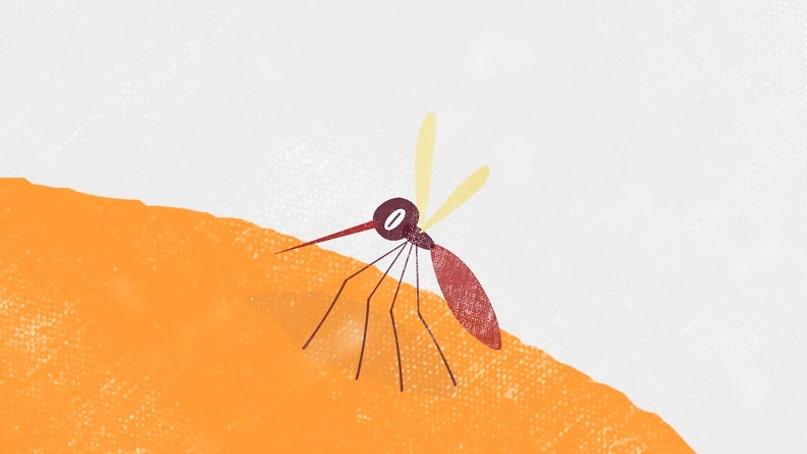 Novartis 'Malaria'