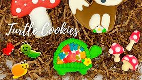 DIY Kit: Turtle Cookie