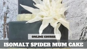 Paid Video Preview: Create an Isomalt Mosaic Tile and Spider Mum Cake