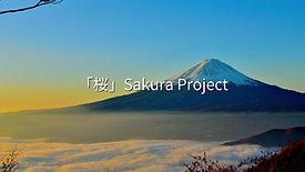 「桜」Sakura Project