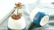 Mini Succulent Pots