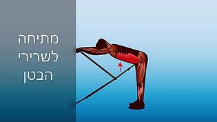 תרגול איכותי: הדמיית שרירים | Riteback