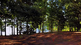 Anglers Point, Tennessee