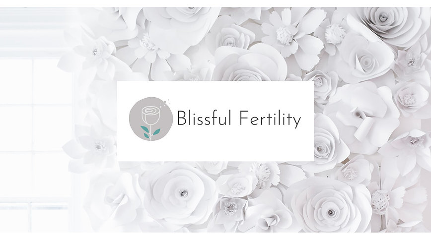 Blissful Fertility Egg Donation & Surrogacy Agency