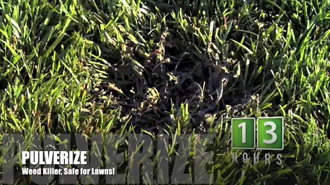 PULVERIZE® Weed Killer for Lawns