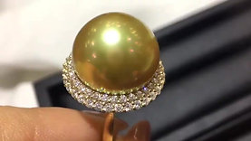CUSTOMIZE | 16-17mm Golden South Sea Pearl Royal Ring, w/ Japanese Certificate