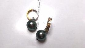 9.5-10 mm Tahitian Pearl Earrings w/ 18k Gold - AAAA