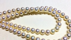 45cm, Queen|皇后 7.5-8 mm Akoya Pearl Classic Necklace w/ Japanese Certificate