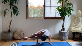 (65 min.) Powerful & Strong Flow (Open Hip Arm Balances- compass, elephant, bird of paradise, astravakasana)