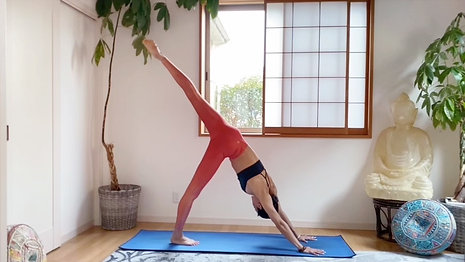 (20 Min) Raise the Frequency Core and Elongating Stretch