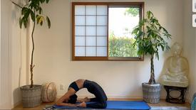 (35 Min) for the busy Yogi Float into Arm Balance