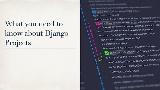 What You Need to Know About Django Projects