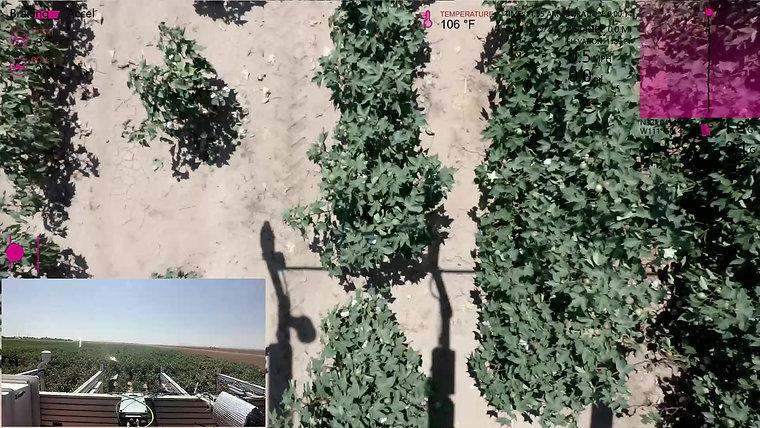 Video example 2017 F013 Run14 onepass
