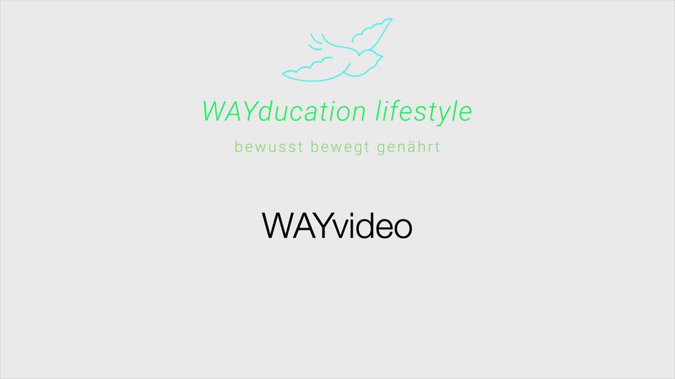 Lebensfeld III - WAYmotion