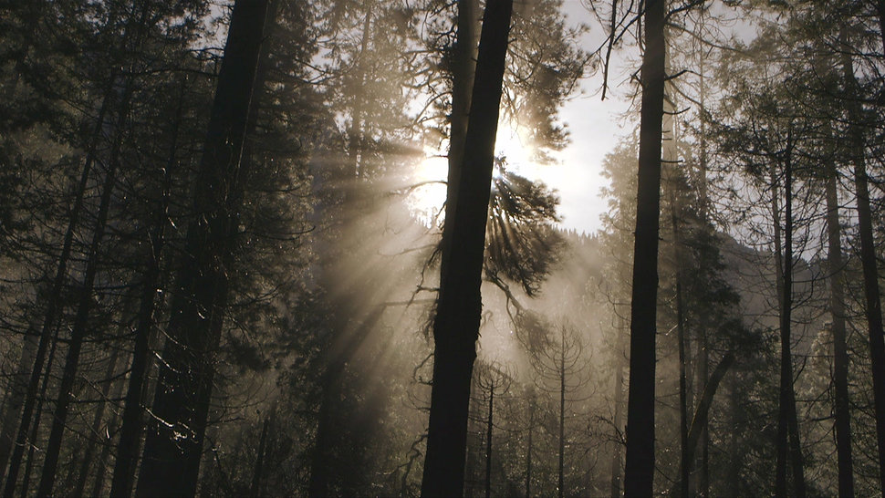 Yosemite-Mother Nature