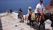 Donkey ride, Santorini, Greece