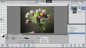 Layer Masks and Moving Selections and HW#2