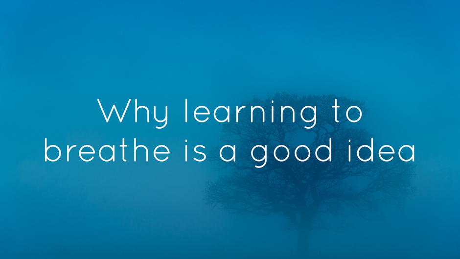 Why learning to breathe better is a great idea