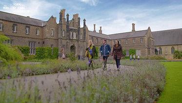 York St. John University - The One