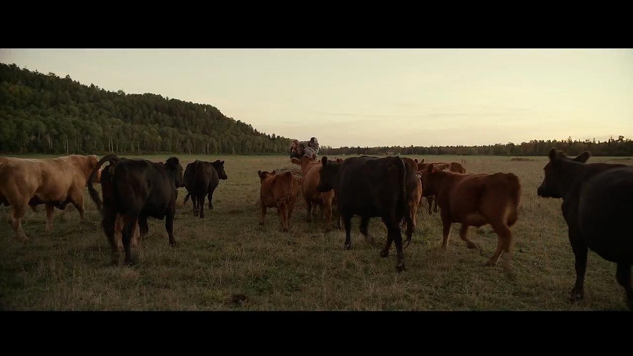 Mean Dreams Trailer