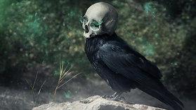 The Spookoholic: Kanchi I Official Book Trailer