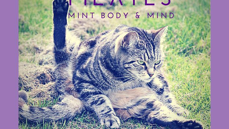 Mini MBM Pilates Short Videos