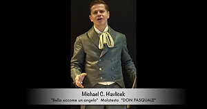 Michael Havlicek - Malatesta - 2016