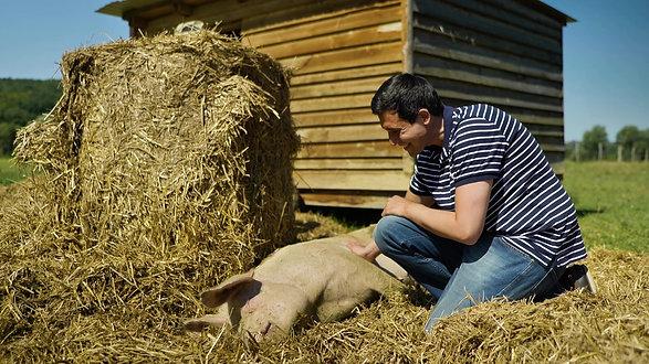Das Tierschutzvolksbegehren zu Gast beim Verein Ferkelfroh