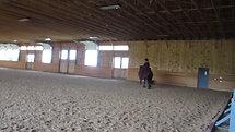 Showcase at Topfield Equestrian Center