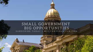 Small Government Big Opportunities