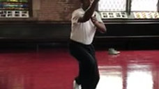 Taijiquan Yang Style Long Form (slow speed demo)